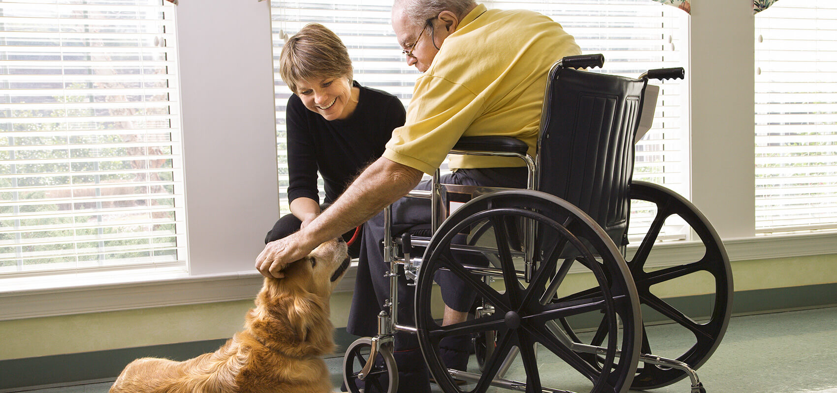 Northleach Court Care Home well being therapy dog